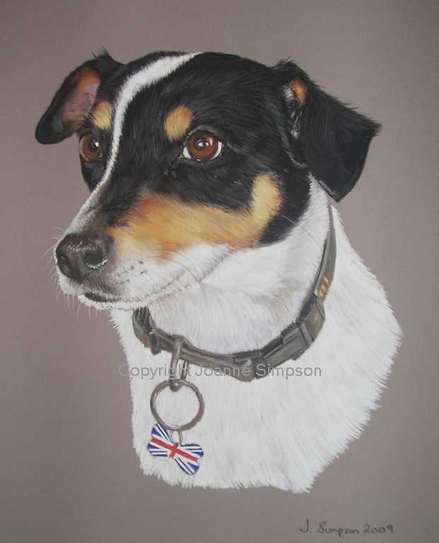 Terrier pet portrait by Joanne Simpson