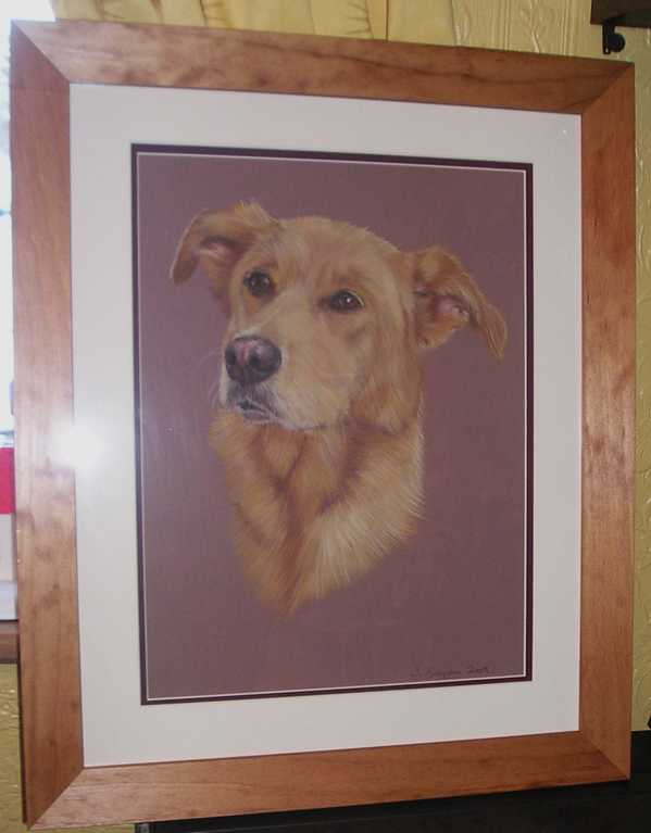 Golden Labrador Cross pet portrait by Joanne Simpson