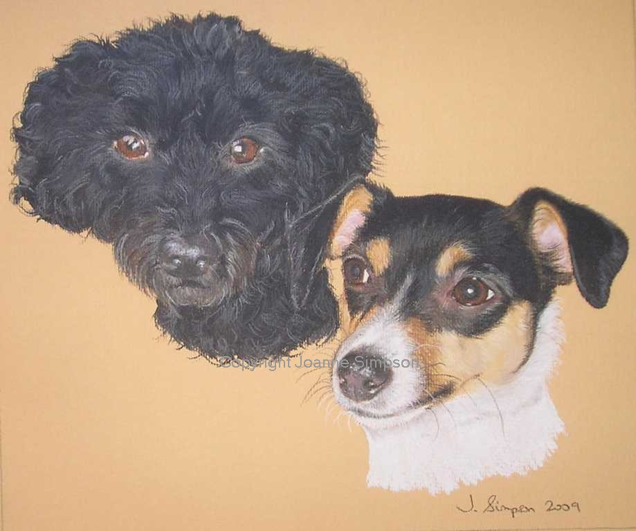 Poodle and Jack Russell pet portrait by Joanne Simpson