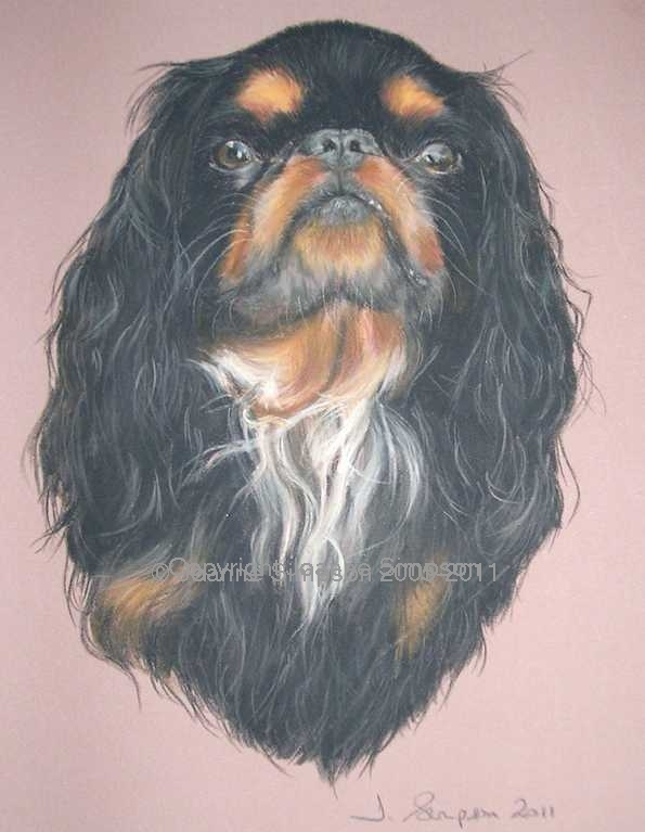 King Charles Spaniel pet portrait by Joanne Simpson