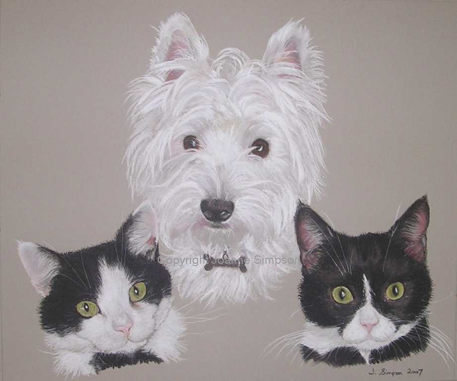 Mixed pet portrait by Joanne Simpson.